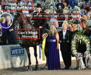 Abused TWH horse winning event